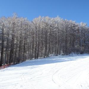 【県北】〔九戸村〕村営くのへスキー場