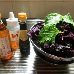 赤紫蘇酢ジュース第二弾(りんご酢&はちみつで)/雨の日の佃煮作りも/梅雨の頃に思い出す…