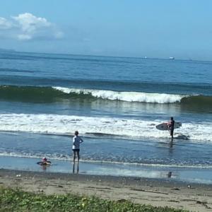8月11日 、富津の波は?