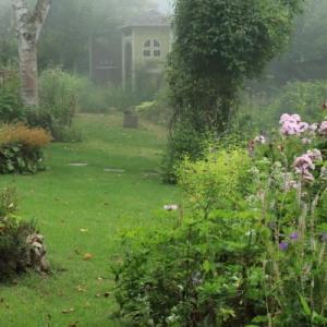 Not rain, but fog