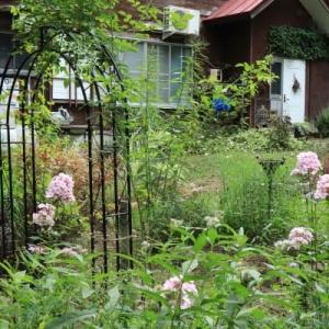 The nostalgic garden in summer