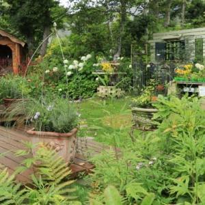 Various garden view