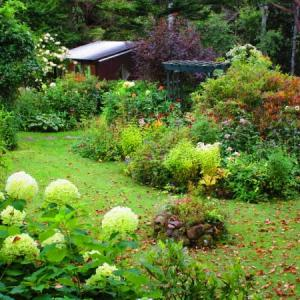 My garden by 極彩色 mode