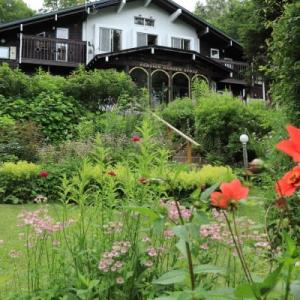 Today's front garden