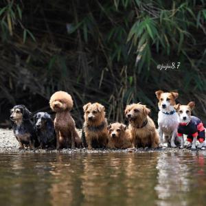 川遊び!!
