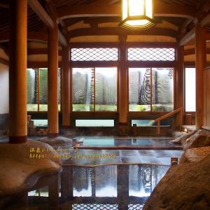 昭和9年建築 天平風呂 ☆ 修善寺温泉 文化財の宿 新井旅館