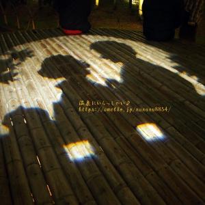 修善寺温泉・竹林の小径 ☆ アートなライトアップ