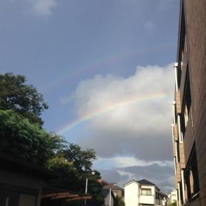 ◆雷雨と虹と長距離ドライブ