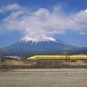 阪神ジュベナイルFの予想