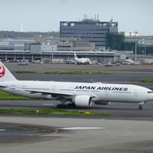 JAL 国際線割引運賃 ヨーロッパ 3クラス 発売!