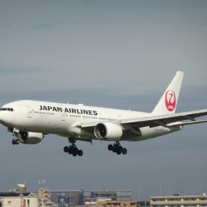 JALアプリ JAL FLIGHT FUN ! 登場