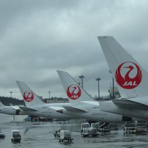 JAL 2021年度 新卒採用 中止 発表