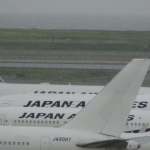 JAL JA8987 B767-300 退役