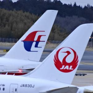 JAL マレーシア航空との共同事業 スタートへ