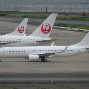 JAL JA313J B737-800 売却か?
