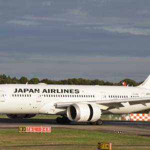 JAL 初日の出フライト 2020 発表