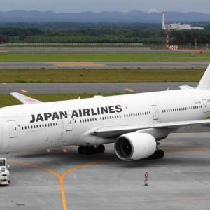 JALショッピング JAL客室乗務員スカーフ柄バッグ登場