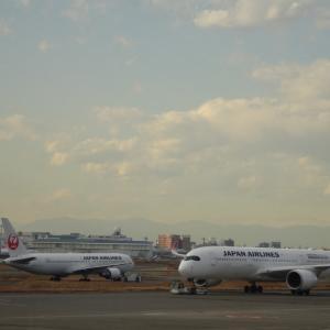 JAL 国内線追加減便発表 2/1 – /28
