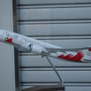 JAL 聖火特別輸送機 撮影できなかったので…