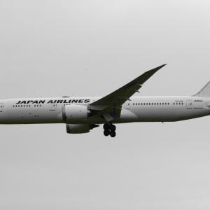JAL パイロットインターンシップ 受付開始