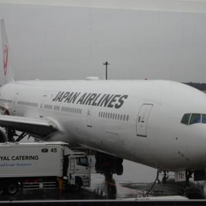 JAL 国際線 8 9月期 運休減便 発表