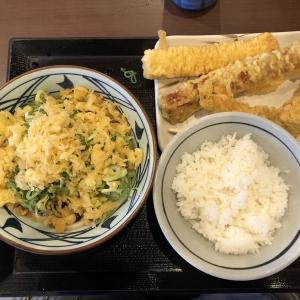 ぶっかけうどん・天丼用ご飯他 丸亀製麺