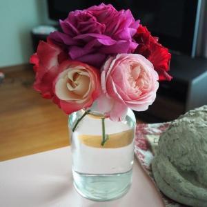 お部屋に薔薇を^^ レンガを大量買い アーチにつる薔薇を植えました