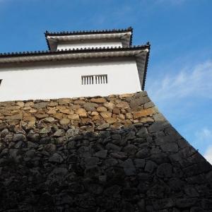 彦根城に初登城 母、転倒する 土替えを待つ薔薇 終わった薔薇