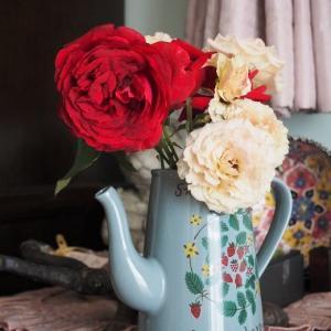 強風にさらされた薔薇さんたち お花屋さんにいた可愛い子♡ 優しいお花シャリファ・アスマ