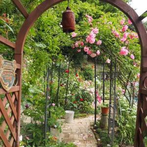 ガーデンの薔薇の配色 薔薇のブーケイロイロ♡