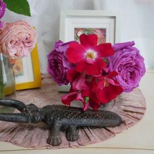 嬉しくも薔薇や多肉を頂きました^^ 小花と薔薇のガーデン ダイナミックに咲くシャルル・ドゥ・ミル