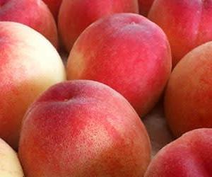 桃(もも)・peach(ピーチ)