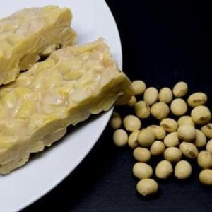 大豆・テンペ・発酵食