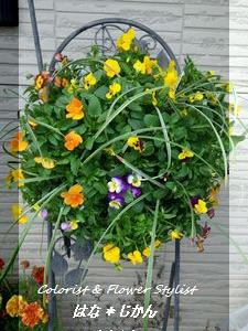 お店周りが華やかになります♪お花の納品に植え替え