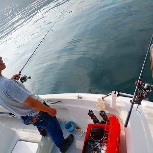 行ってきました。アオリイカ釣り。(ヤエン釣り初心者講習2)