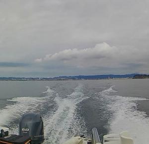 行ってきました。アオリイカ釣り。(2020年、秋シーズン開幕戦)