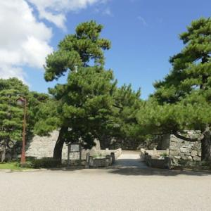 徳島城跡 (徳島県徳島市)城跡から車両基地を見学