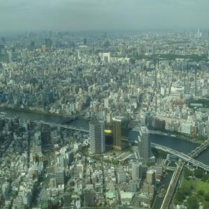 東京遠征も終わり