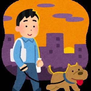 【Lifehack】自宅前を散歩する犬のフン尿対策にお勧めのアイテム/本当は飼主のマナーの問題・・・