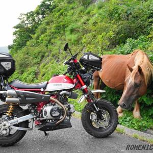 ☆ 202008 ひとり旅 隠岐諸島を満喫 猿と馬 360度の絶景 摩天崖 ☆