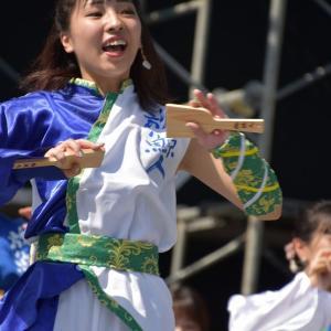 第4回yosakoi高松④