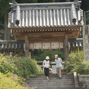 塩江町の萩寺、最明寺