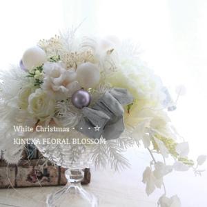 一足早い「White Christmas」&「森のWEB作品展」森へ撮影に行ってきま~す♪
