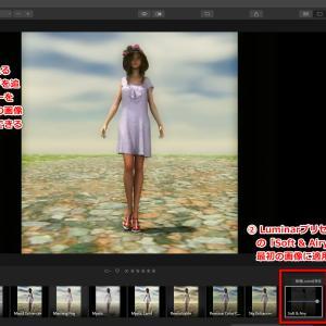 Topaz Video Enhancer AIとLuminar4の動画高品質化ツール