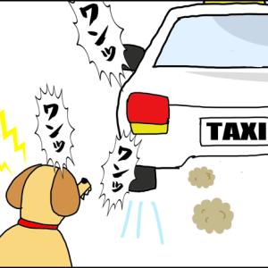 車内で犬が吠えてると思ったら・・・