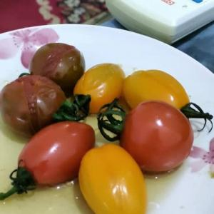 [気温22℃][雨] トマトのおでん