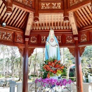 [気温26℃][晴れ] Kon Tum Mang Denの旅その5 ちょっとマニアックな話を