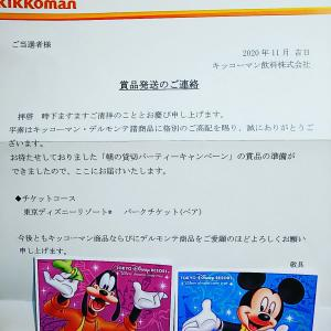 当選☆ディズニーリゾートペアチケット☆ケーマー脳☆