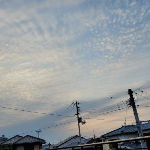 トールペイントカーニバルin広島は開催です!