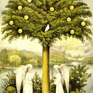 「生命の木と占星術」で天命を知る